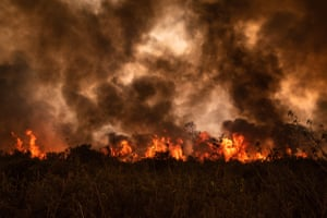 Forest fires burn in Pocone in the state of Mato Grosso.