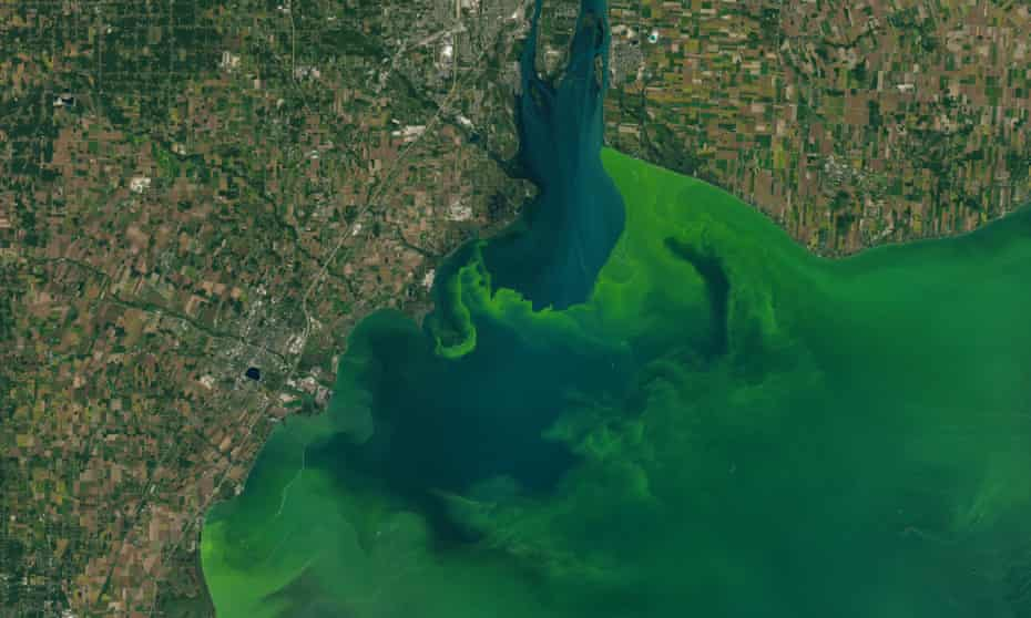 Satellite images capture the algae bloom in Lake Erie in 2017.