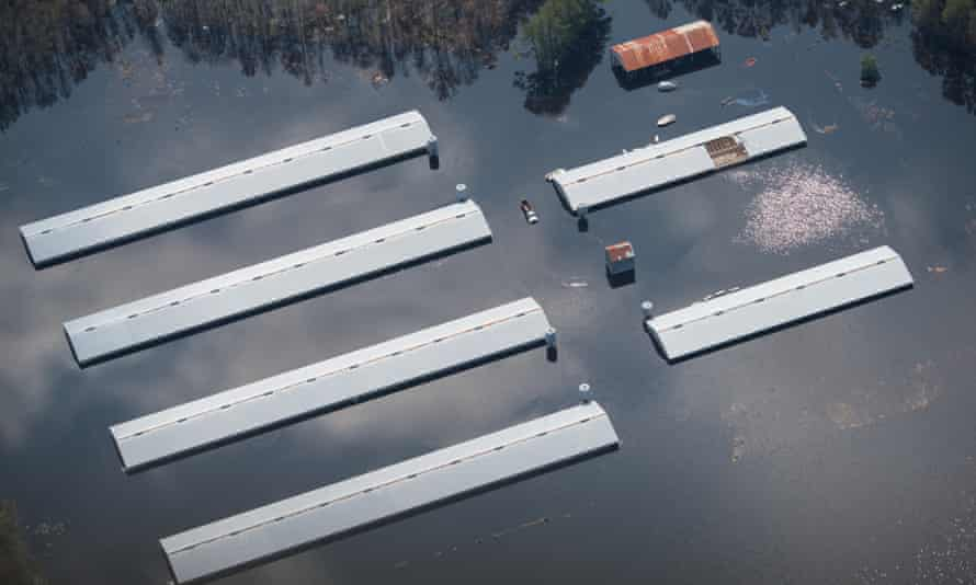 Aerial pictures of a flooded farm in North Carolina