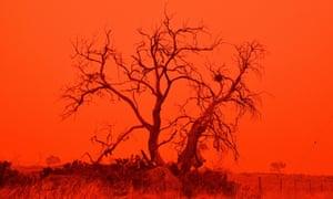 Red sky in Australia during the bushfires
