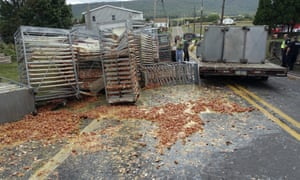 Smashed eggs clutter Route 125 in Hegins Township Pennsylvania after a truck overturned spilling tens of thousands of eggs onto the road.