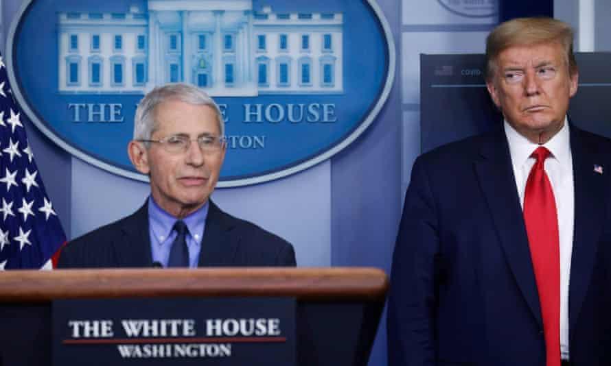 Anthony Fauci and Donald Trump at coronavirus briefing