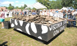 Wisconsin cow Chip Festival