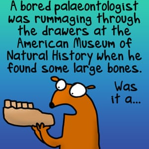 """A bored palaeontologist was rummaging through the drawers at the American Museum of Natural History when he found some large bones. It was a..."""