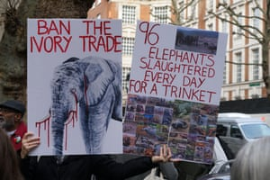 Animals right activists stage a protest outside the Nobel House in London, UK on 16 November to demand a full ban on the ivory trade