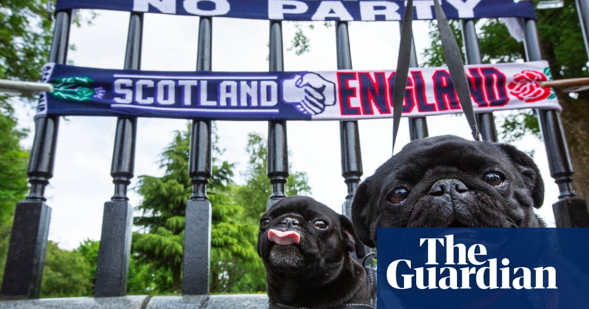 Underdogs and proud: Scotland's fans reflect a nation growing in its sense of self
