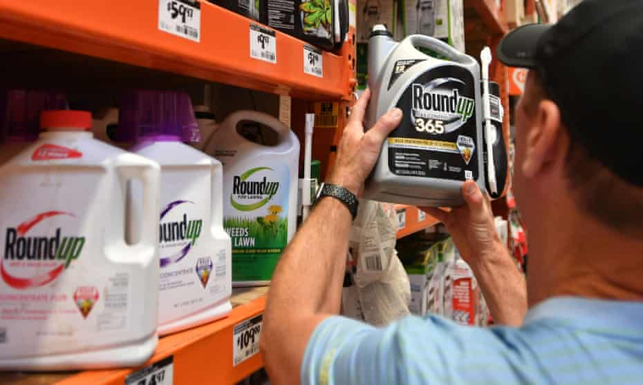 The second phase of the trial focused on claims that Monsanto quietly worked to control research and sway regulators about Roundup's safety.
