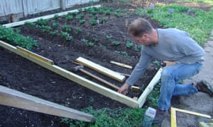 Making beds for a vegetable garden