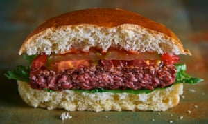 The B12 Burger
