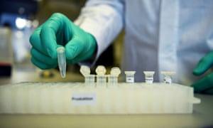 Scientist handling vaccine vials.