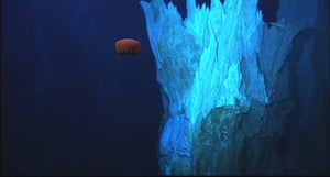 Deep-sea jellyfish, undulating several metres above the seafloor just south of the Imax vent at Lost City in the mid-Atlantic ocean. The Lost City Hydrothermal Field is a remarkable geobiological feature in the deep sea, which is unlike any other ecosystem