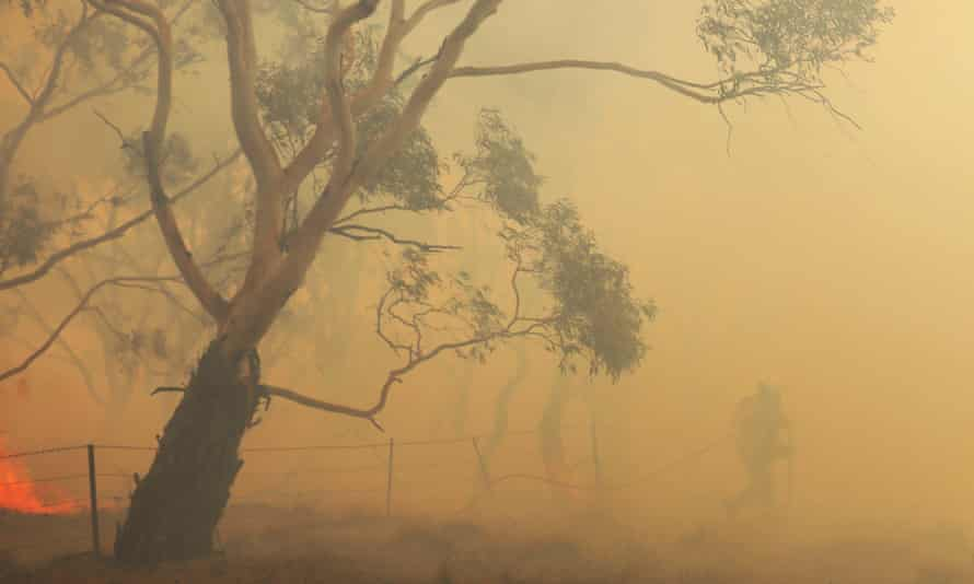 Firefighters extinguish a blaze that crossed the Monaro Highway, north of Bredbo, NSW