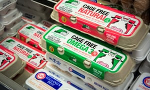Eggs produced from cage-free hens are seen on sale in a supermarket in New York.