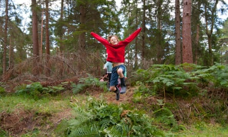WildPlay free event at Anderwood in the New Forest National Park
