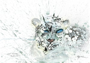Snow Leopard by Ralph Steadman