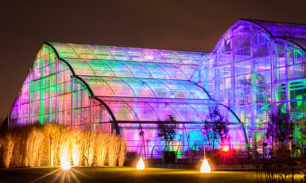 illuminations in the Glasshouse at RHS Garden Wisley CREDIT RHS and Andrew Cochrane