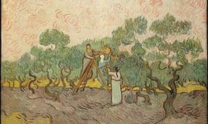 梵高的女性采摘橄榄