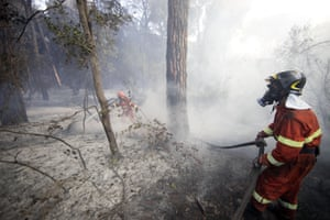 Firemen work to extinguish a fire in the pine forest of Castelfusano in Ostia near Rome, Italy