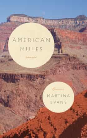 Martina Evans' American Mules (Carcanet)
