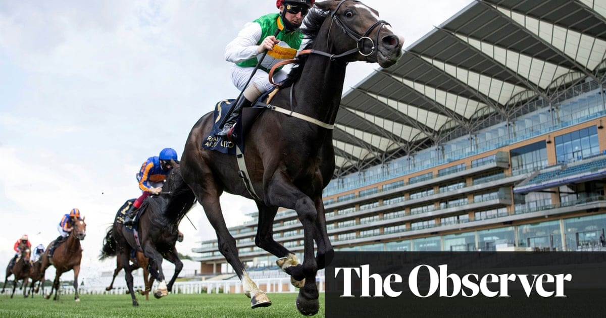 Pyledriver a genuine Derby hope for bits and bobs owner Guy Leach | Chris Cook