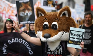 Foxhunting protesters
