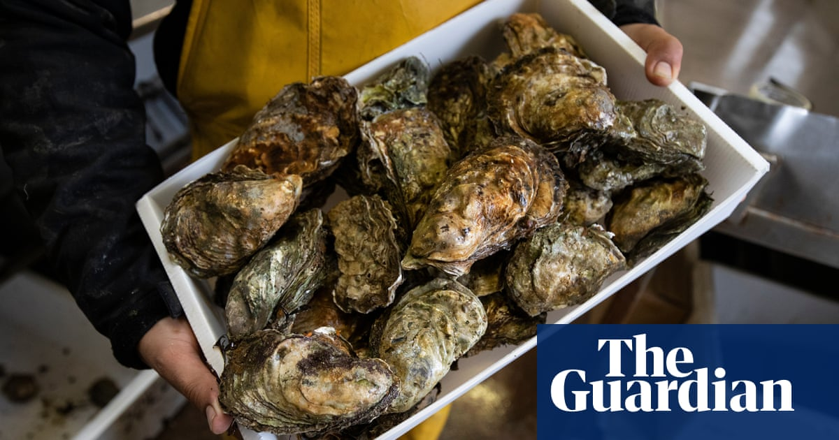 UK shellfish farmers threaten legal action over ban on exports to EU