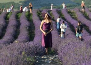 Bakhchysarai, Crimea A woman enjoys a walk through a lavender field on a warm summers day in the disputed region.