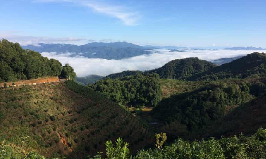 Xishuangbanna prefecture, near China's border with Laos and Myanmar, has become a refuge for jaded urbanites.