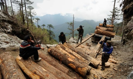In this 2011 photo, workers load illegally logged timber into a truck in Sawlaw, northern Kachin state.