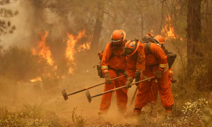A California Department of Corrections and Rehabilitation inmate work crew builds a containment line ahead of flames from a fire near Sheep Ranch, California.
