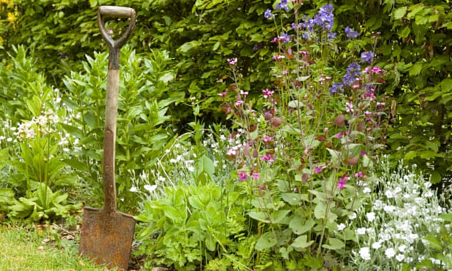 Rusty old spade? Leave it in the shed.