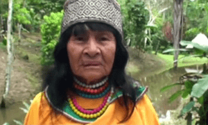 Olivia Arévalo, a female shaman, was killed in the village of Victoria Gracia in Peru's central Amazon region of Ucayali.