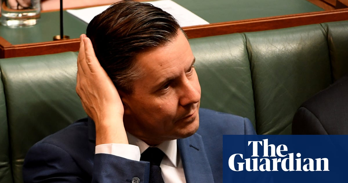 Mark Butler rows back remarks dismissing gas as Labor divisions exposed – The Guardian