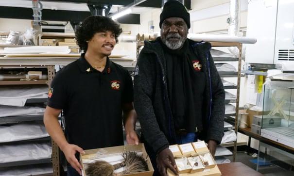 Manchester museum returns stolen sacred artefacts to Indigenous Australians