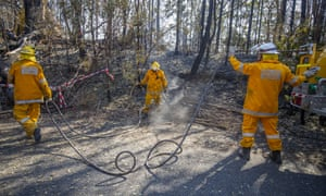 Queensland firefighters put out spot fires at Binna Burra Road, Beechmont, in the Gold Coast hinterland.