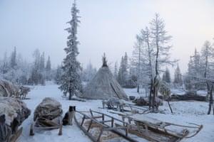 Nenet tribal tents, northern Siberia.