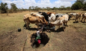 A herder stands in a water hole to collect water for his cattle in Laikipia county, Kenya, on 1 March, 2017.