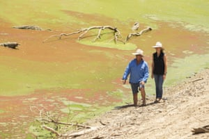 Chrissy and Bill Ashby on the banks of the Darling River,which is covered with blue-green algae near their property.