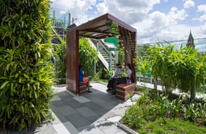 Lady Cilento Children's Hospital garden in Brisbane, winner of the Australian Institute of Landscape Architects' civic landscape award