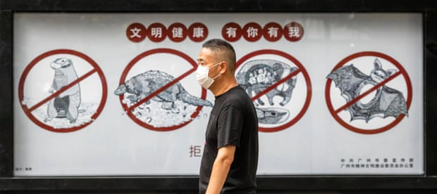 A man walks past a poster warning people in Guangdong province, China, that consuming wildlife is illegal. Photograph: Alex Plavevski/EPA