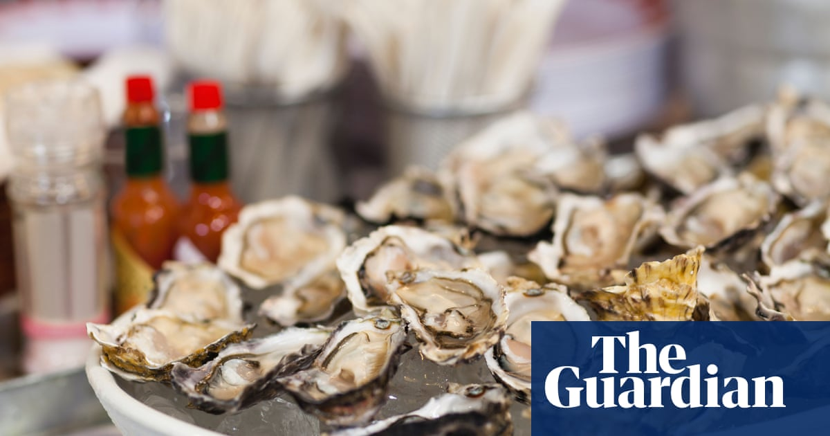 UK's first sustainable European oysters go on sale | Environment