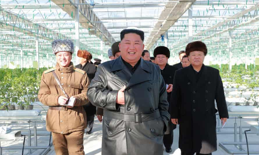 North Korean leader Kim Jong-un visits a vegetable greenhouse farm and a tree nursery.