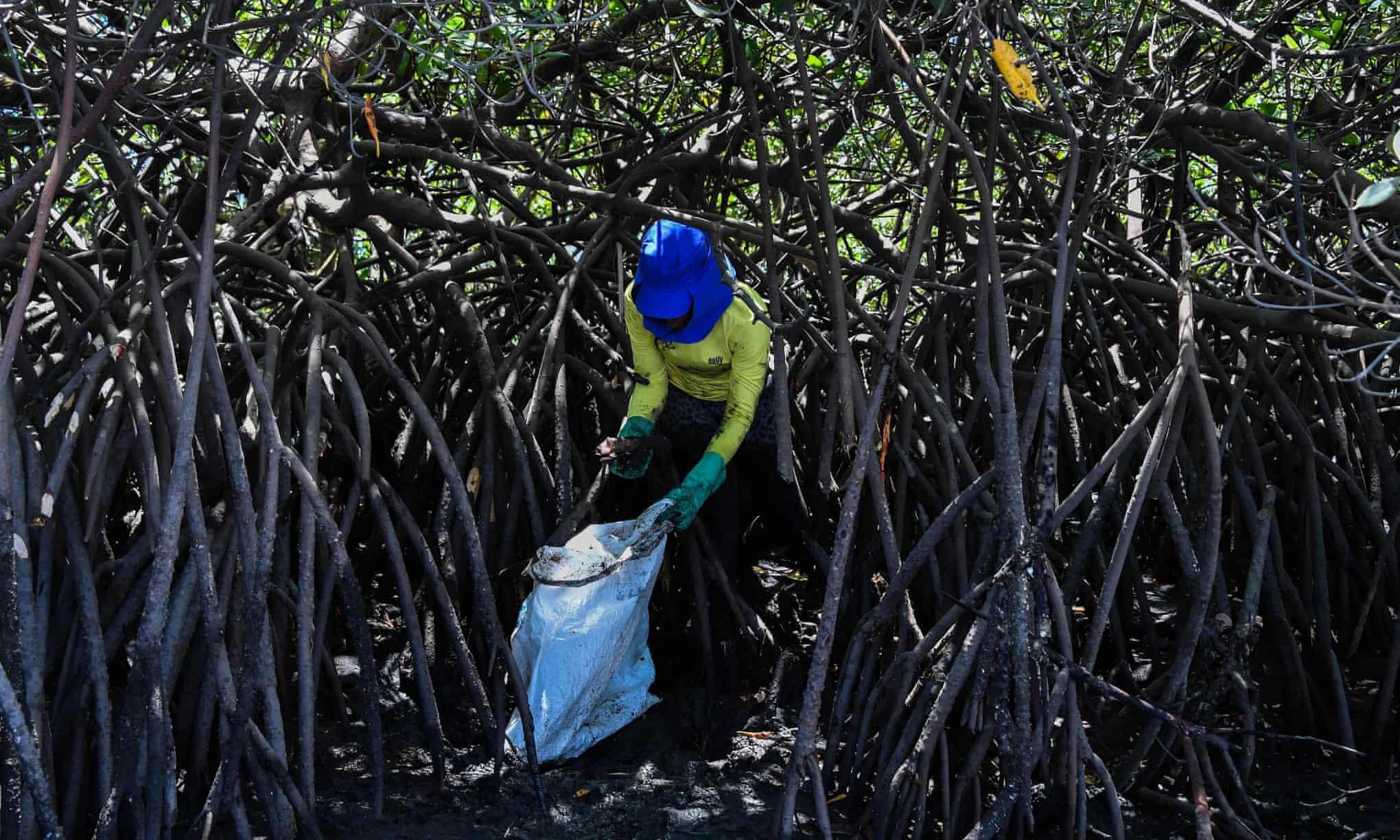 Brazil-Oil-Spill