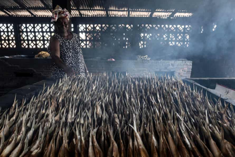 Mba Oumie Jobe smokes fish in Gunjur village