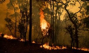 Fire front at Kulnara, near Mangrove mountain, NSW. 6 December 2019.