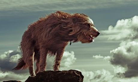 Born free: readers' photos on the theme of wild