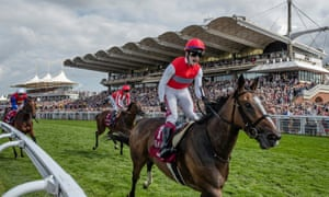 Horse racing tips | Sport | The Guardian