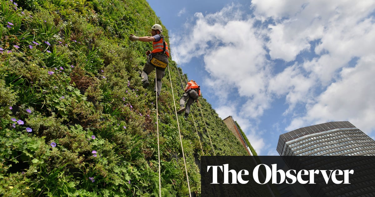 Battle for clean air is sending our gardens to new heights