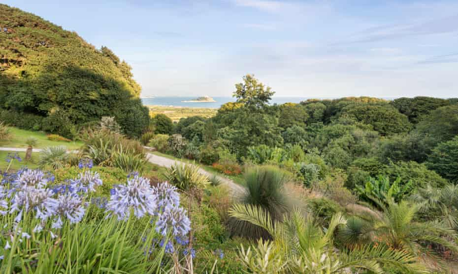 The hillside garden with sweeping views over the water to St Michael's Mount.