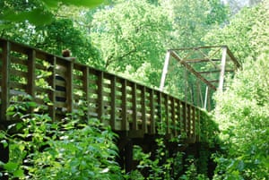Key Bridge in the Sumter national forest